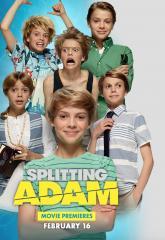 Расщепление Адама